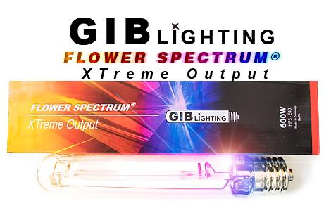 gib-xtremehps2