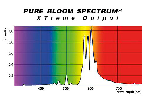 pure_bloom_spectrum