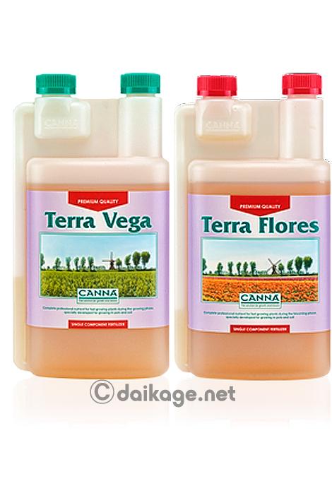 terra_vega_flores